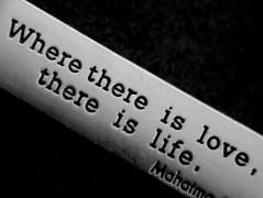 loveoflove